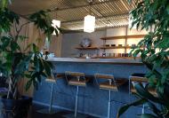 TOLGAcafe店内3